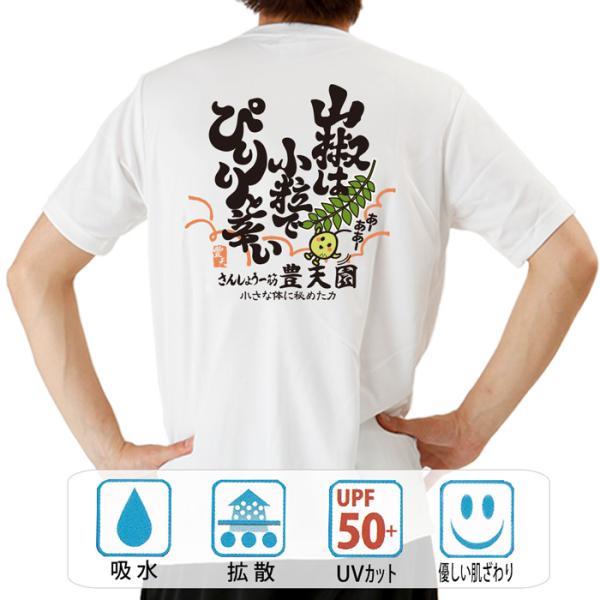 おもしろtシャツ ドライ 和柄 開運 元祖豊天商店 山椒 半袖