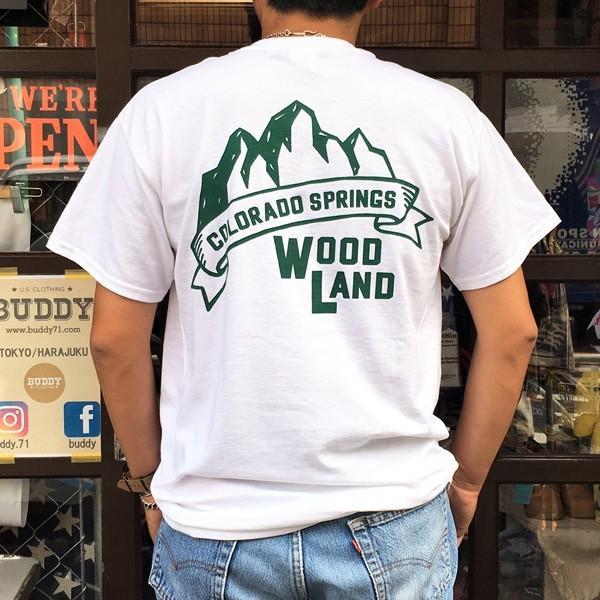 コロラド スプリングス BUDDYオリジナル WOODLAND COLORADO SPRINGSTシャツ ホワイト GILDAN CAMP USA アメリカ国立公園 アウトドア キャンプ|buddy-us-clothing|02