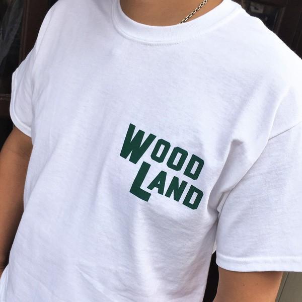 コロラド スプリングス BUDDYオリジナル WOODLAND COLORADO SPRINGSTシャツ ホワイト GILDAN CAMP USA アメリカ国立公園 アウトドア キャンプ|buddy-us-clothing|03