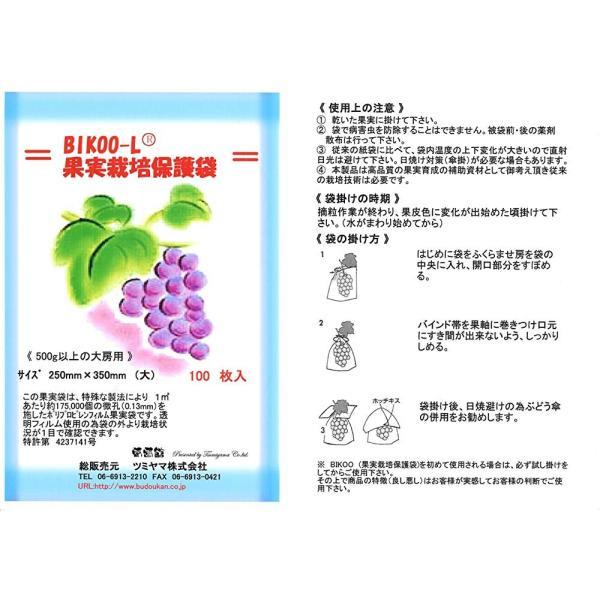 BIKOO - L 大 (250×350) サイズ (農産物保護用袋) 100枚入|budoukan-shop|06