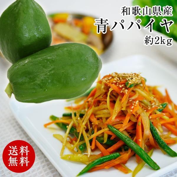 和歌山県産 青パパイヤ 約2kg(2〜4玉)(送料無料)※一部地域除くパパイン酵素たっぷり!効能たっぷり! (fy3)|bundara
