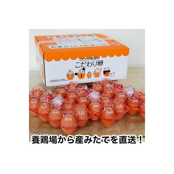 こだわり家族のこだわり卵 30個入 (送料無料) (fy5)|bundara|03