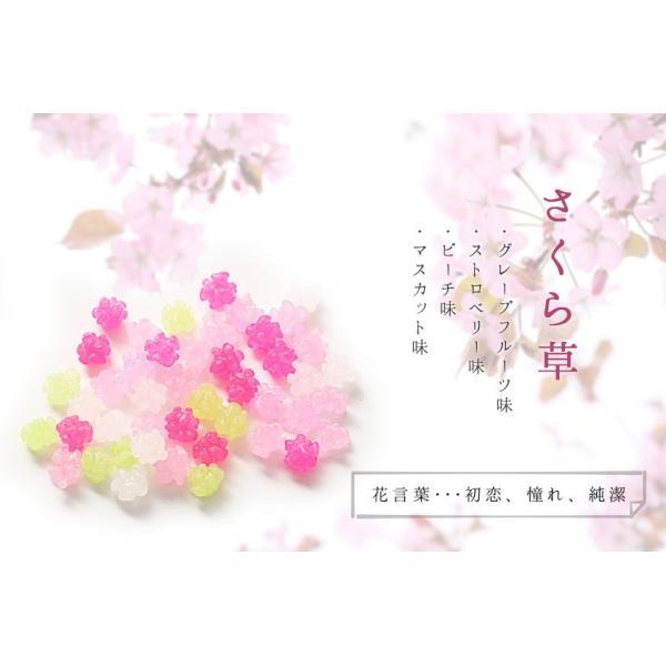 プチギフト 退職 お礼 お菓子 メッセージ入り 金平糖(こんぺいとう)コンペイトウ 30g bundara 04