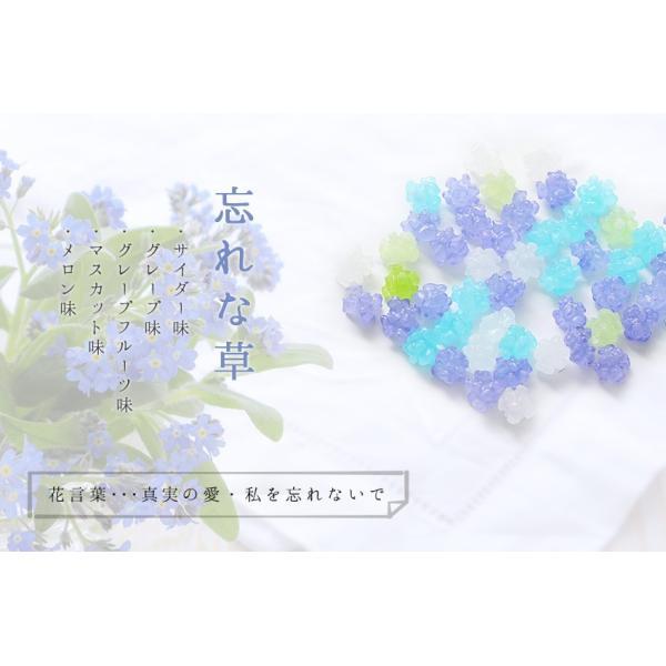 プチギフト 退職 お礼 お菓子 メッセージ入り 金平糖(こんぺいとう)コンペイトウ 30g bundara 05