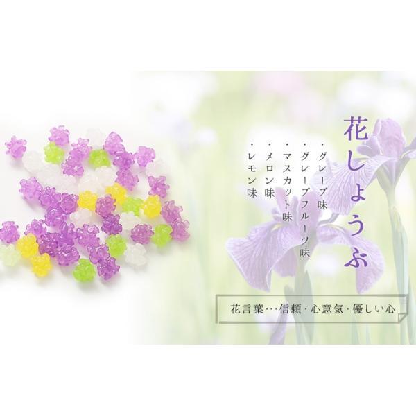 プチギフト 退職 お礼 お菓子 メッセージ入り 金平糖(こんぺいとう)コンペイトウ 30g bundara 06