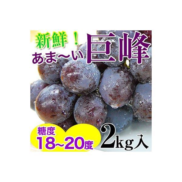2021年ご予約開始! 巨峰2kg(4〜6房入)和歌山県 有田巨峰村の朝採り巨峰大変みずみずしく、甘さたっぷりコクのあるぶどう※種にご注意下さい。 (fy4)