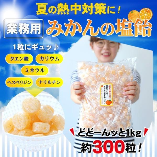 熱中飴、熱中対策、夏バテ対策に!業務用 みかん塩キャンディ(みかん塩飴) 1kg(3g× 約300粒)入 ※3袋で送料無料(北海道、沖縄を除く) (fy3)