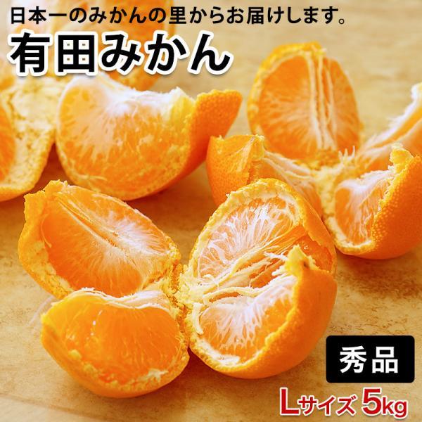 低農薬、自然のマルチ栽培で作る美味しい 有田みかん Lサイズ 5kg 送料無料(北海道、沖縄を除く)(fy5)