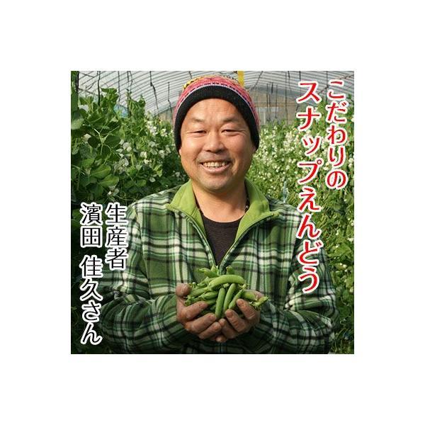 こだわりスナップえんどう1kg 匠の里紀州が育てる安心安全でさやごと食べれる、驚きの甘さのスナック豌豆を産地直送でお届け|bundara|02