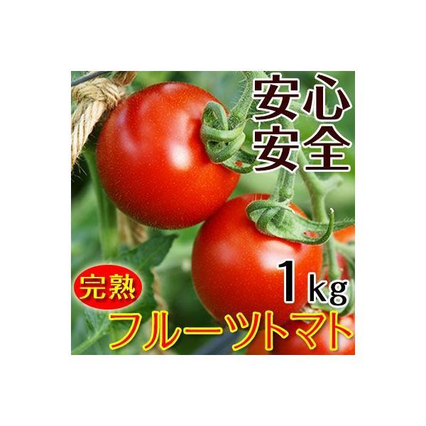 こだわりフルーツトマト1kg(送料無料)匠の里紀州が育てる減農薬、減化学肥料栽培 安心安全なコクのある驚きの甘いトマトを産地直送 (fy5)|bundara|02