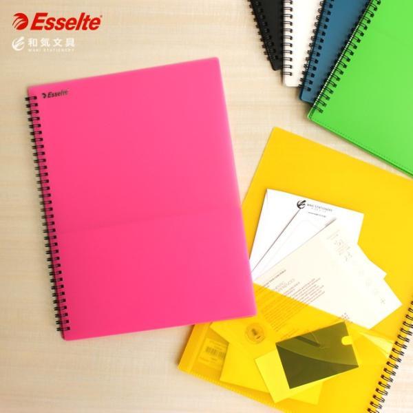 エセルテ ESSELTE 8ポケットA4ファイル