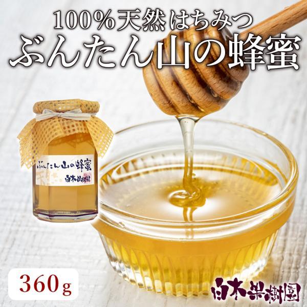 2021年産 はちみつ ぶんたん山の蜂蜜 文旦 ハチミツ