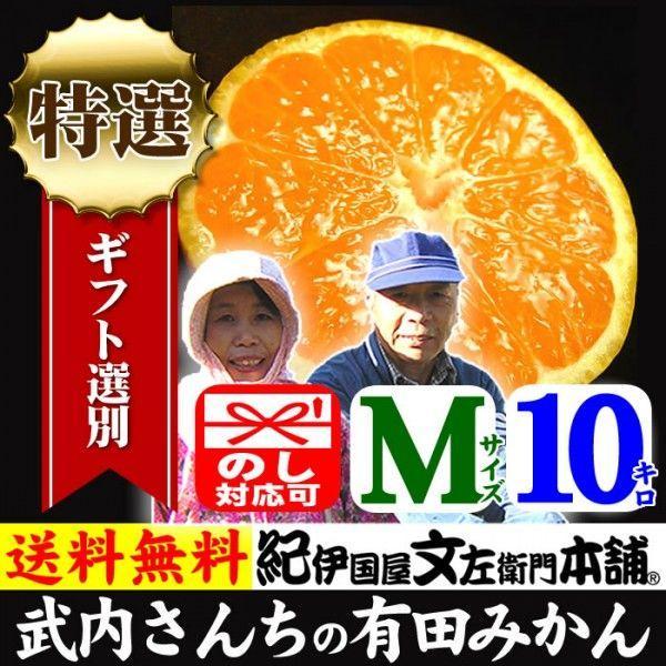 和歌山みかん 産地直送 武内さんちの有田みかん(Mサイズ)約10kg 厳選ギフト