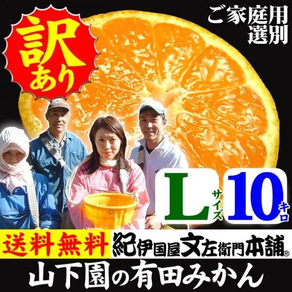和歌山有田みかん 山下園の有田みかん ご家庭用 (Lサイズ) 約10kg 温州みかん・正しくは「ありたみかん」ではなく、「ありだみかん」です