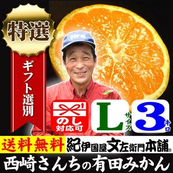和歌山有田みかん 西崎さんちの和歌山有田みかん 約3kg (Lサイズ) 贈る特選ギフト品