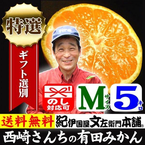 和歌山有田みかん 西崎さんちの和歌山有田みかん 約5kg (Mサイズ) 特選ギフト品を贈る