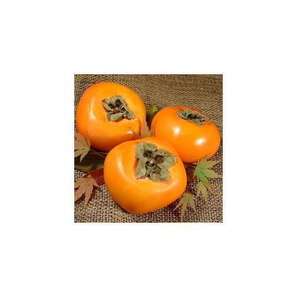 たねなし柿 約7.5kg 2L 32個入 青秀  ながみね  秋 味覚 (訳あり わけあり 不ぞろい)種なし柿 種無し柿 紀州和歌山