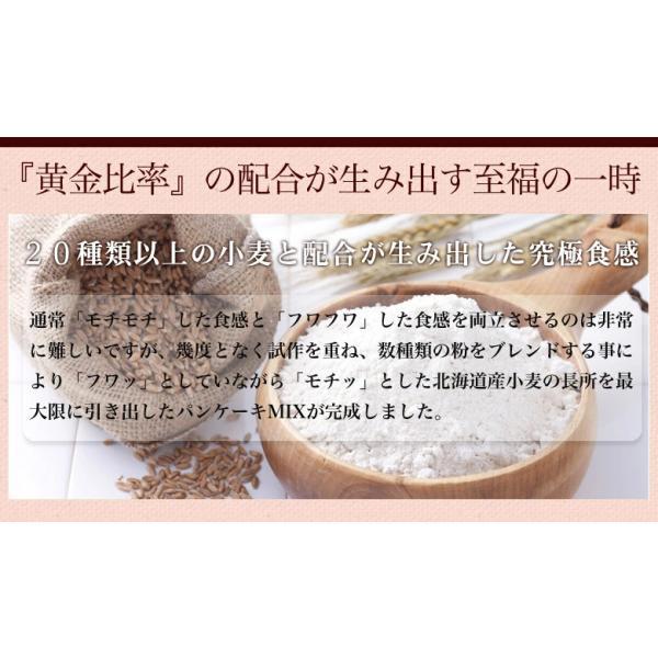 (送料無料 500円ポッキリ)北海道小麦の.パンケーキミックス2袋. 3種類から選べる!ホットケーキミックス ホットケーキ ポイント消化 アルミフリー【C】|buono-buono|08