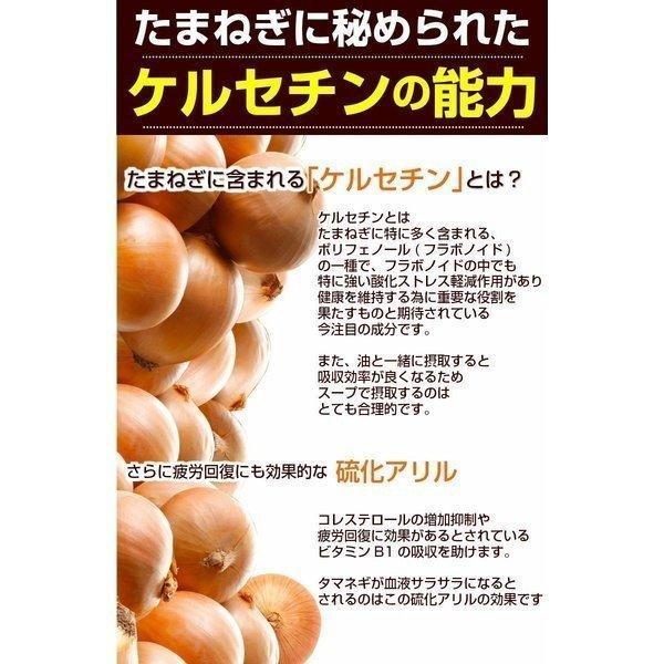 (送料無料)2種類から選べる!じっくり煮込んだ北海道.玉ねぎスープ30袋セット. 生姜  グルメ 仕送り  セール【U】|buono-buono|07