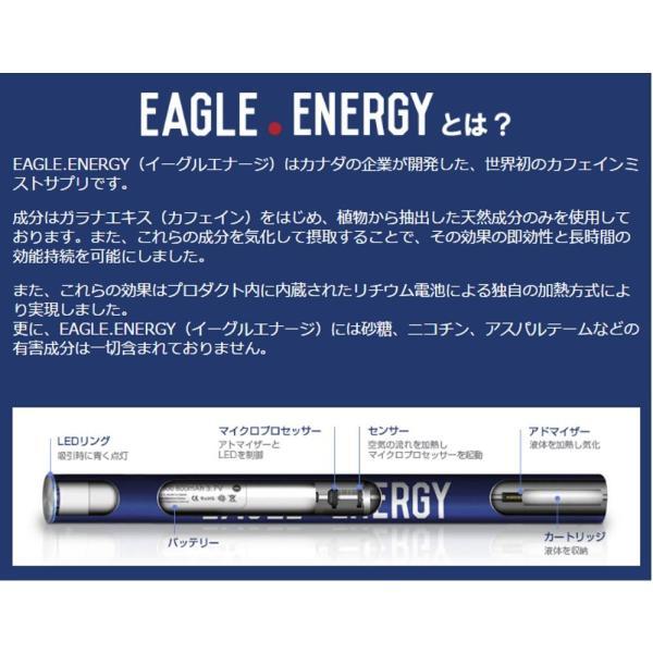 Eagle Energy Energy Drink Flavorイーグルエナジー エナジードリンクフレーバー|butterflygarage|02