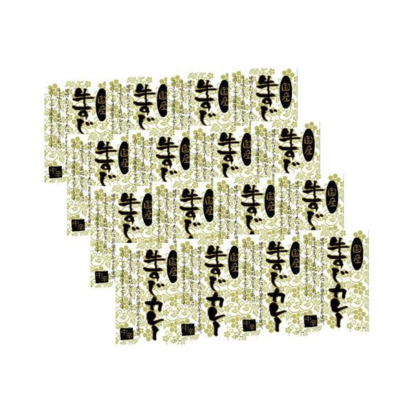 国産牛すじカレー K20715825