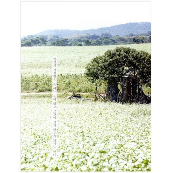 コン・ユ、キム・コウン主演 tvNドラマ『鬼 トッケビ』フォトエッセイ 初版付録フォト付き c-factory 06