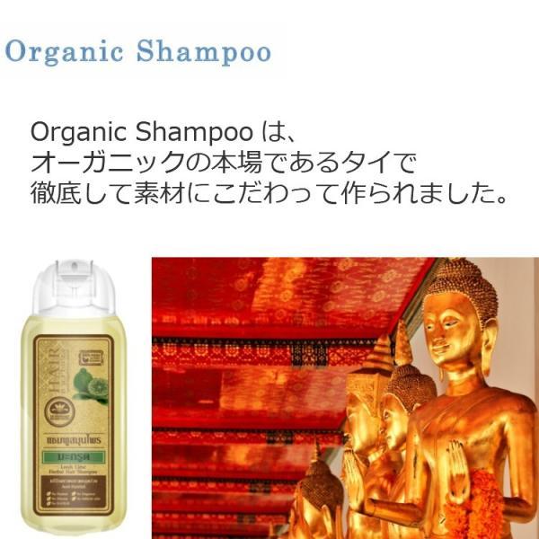 送料無料 タイ産 オーガニックシャンプー&コンディショナー リーチライム 美容 美髪 ふけ かゆみ 乾燥 人気 おすすめ|c-garden|03