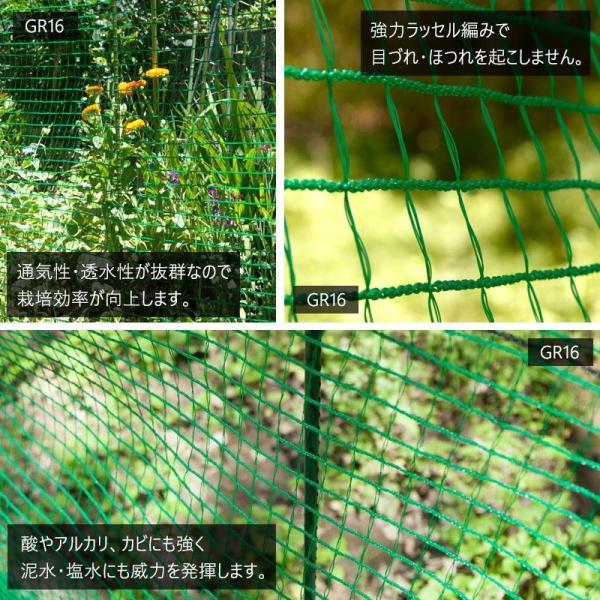 アニマルネット 防獣網 農業用ネット 16mm目 サイズオーダー 幅30〜100cm×丈30〜100cm|c-ranger|03