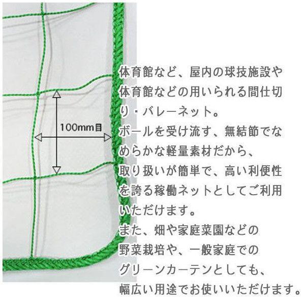 NET29 園芸  緑のカーテン グリーン バレーボールネット 巾301〜400cm 丈101〜200cm|c-ranger|02