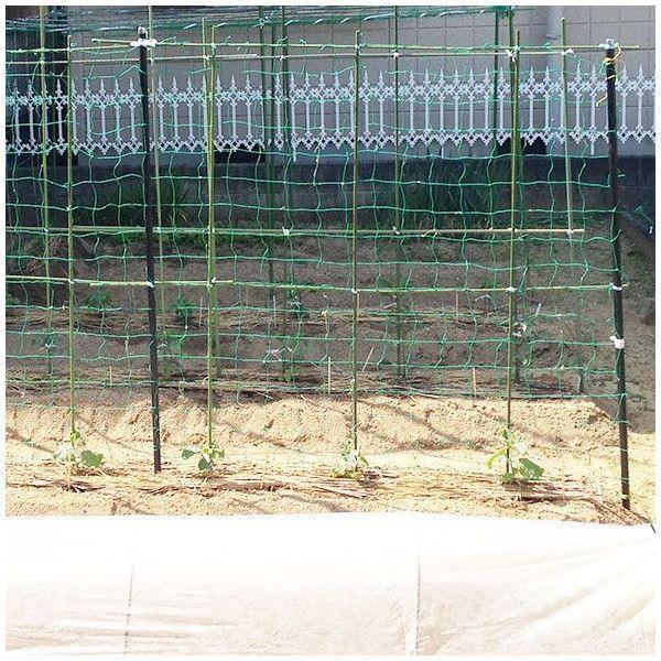 NET29 園芸  緑のカーテン グリーン バレーボールネット 巾301〜400cm 丈401〜500cm c-ranger 03