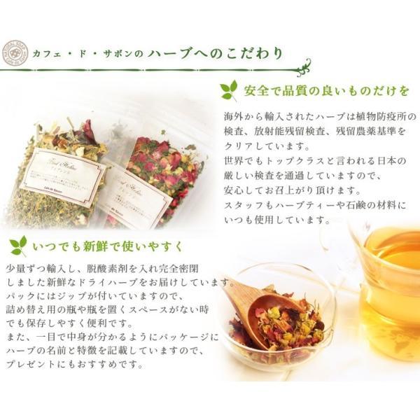 ペパーミント ( 10g単位 ハーブ量り売り ) (ポストお届け可/9)(1907h)|cafe-de-savon|03