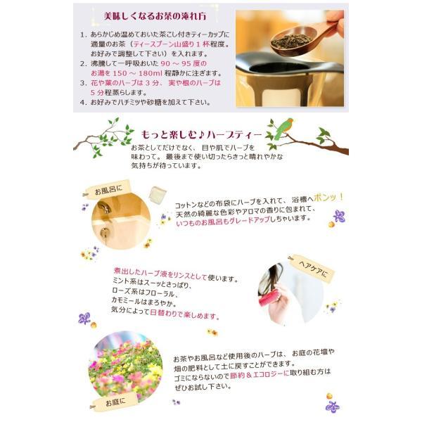 ペパーミント ( 10g単位 ハーブ量り売り ) (ポストお届け可/9)(1907h)|cafe-de-savon|04