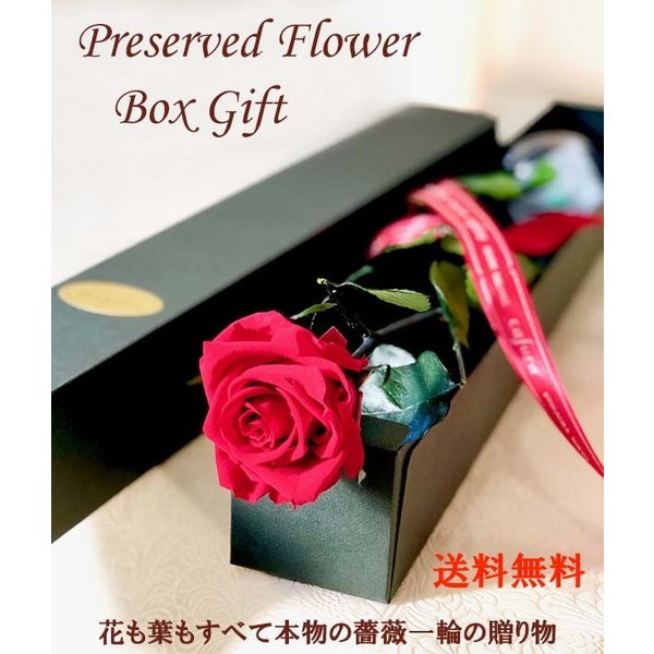 プリザーブドフラワー バラ1輪 ボックス おしゃれ 記念日 誕生日 プレゼント プロポーズ お祝い ギフト cafura