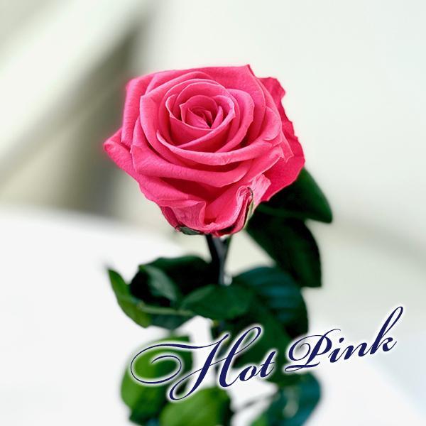 プリザーブドフラワー バラ1輪 ボックス おしゃれ 記念日 誕生日 プレゼント プロポーズ お祝い ギフト cafura 04