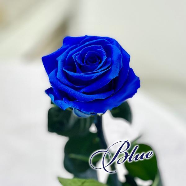 プリザーブドフラワー バラ1輪 ボックス おしゃれ 記念日 誕生日 プレゼント プロポーズ お祝い ギフト cafura 05