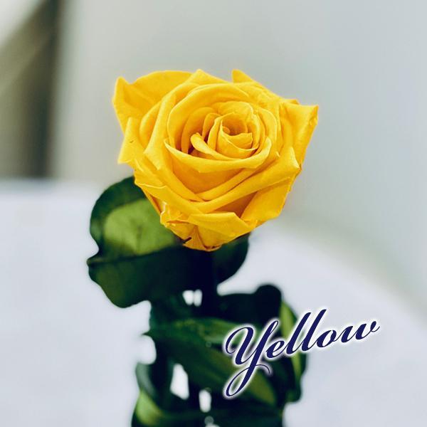 プリザーブドフラワー バラ1輪 ボックス おしゃれ 記念日 誕生日 プレゼント プロポーズ お祝い ギフト cafura 06