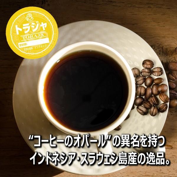 コーヒー豆 粉 トラジャ 500g(挽き) 自家焙煎 珈琲 珈琲豆 商品番号16770|cairncoffee|13