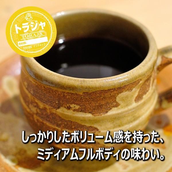 コーヒー豆 粉 トラジャ 500g(挽き) 自家焙煎 珈琲 珈琲豆 商品番号16770|cairncoffee|14