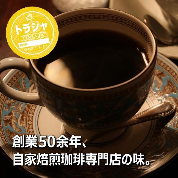 コーヒー豆 粉 トラジャ 500g(挽き) 自家焙煎 珈琲 珈琲豆 商品番号16770|cairncoffee|15