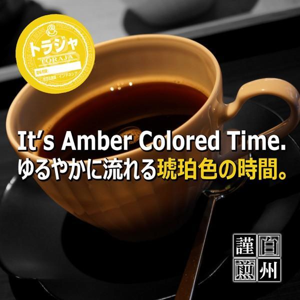 コーヒー豆 粉 トラジャ 500g(挽き) 自家焙煎 珈琲 珈琲豆 商品番号16770|cairncoffee|03