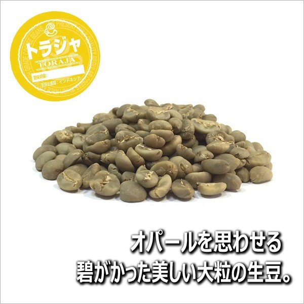 コーヒー豆 粉 トラジャ 500g(挽き) 自家焙煎 珈琲 珈琲豆 商品番号16770|cairncoffee|04