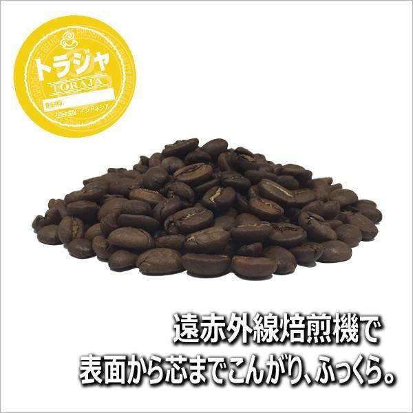 コーヒー豆 粉 トラジャ 500g(挽き) 自家焙煎 珈琲 珈琲豆 商品番号16770|cairncoffee|05