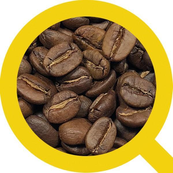 コーヒー豆 粉 トラジャ 500g(挽き) 自家焙煎 珈琲 珈琲豆 商品番号16770|cairncoffee|06