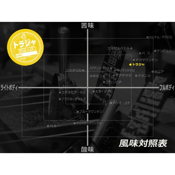 コーヒー豆 粉 トラジャ 500g(挽き) 自家焙煎 珈琲 珈琲豆 商品番号16770|cairncoffee|09