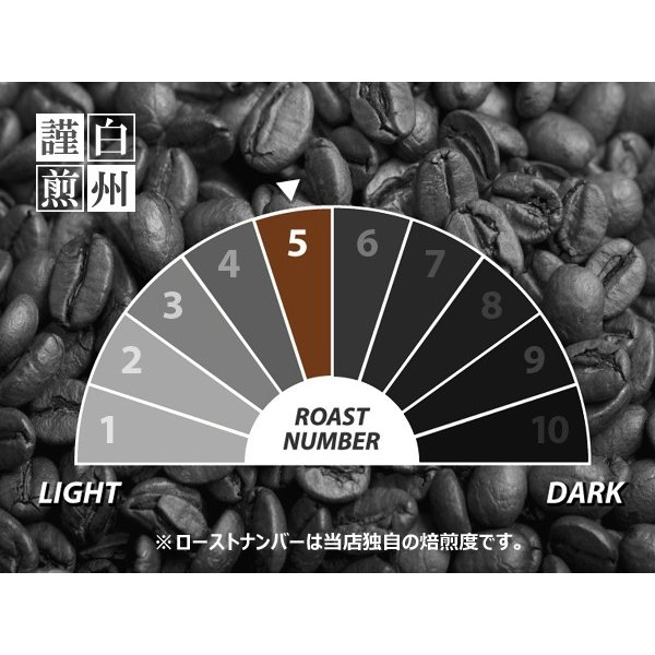 コーヒー豆 粉 トラジャ 500g(挽き) 自家焙煎 珈琲 珈琲豆 商品番号16770|cairncoffee|10