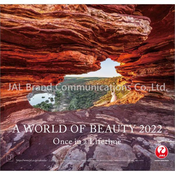 JAL「A WORLD OF BEAUTY」(普通判) 2022年 カレンダー CL22-1112