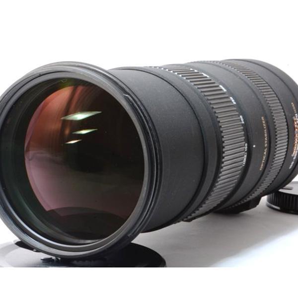 シグマ SIGMA APO 150-500mm F5-6.3 DG OS HSM キヤノン Canon EFマウント 美品 超望遠ズームレンズ  フード付き  <プレゼント包装承ります>