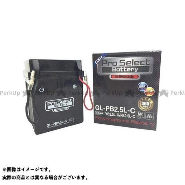 プロセレクトバッテリー GL-PB2.5L-C(YB2.5L-C互換) ジェルタイプ 液入り充電済み Pro Select Battery|camp