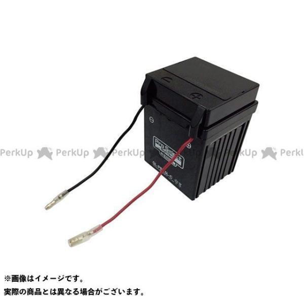 プロセレクトバッテリー GL-PB2.5L-C(YB2.5L-C互換) ジェルタイプ 液入り充電済み Pro Select Battery|camp|02