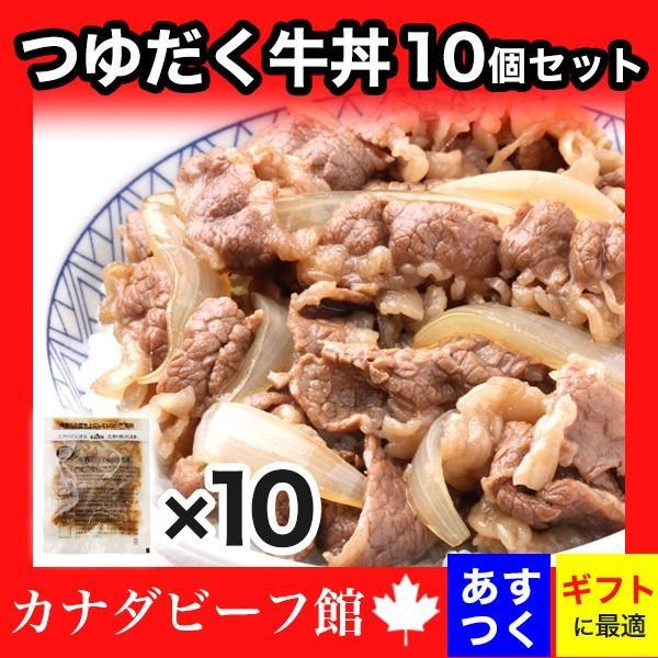 牛丼 牛丼の具 牛どん 送料無料!熊本天然水仕込みのつゆだく牛丼10個セット 牛 牛肉 グルメ